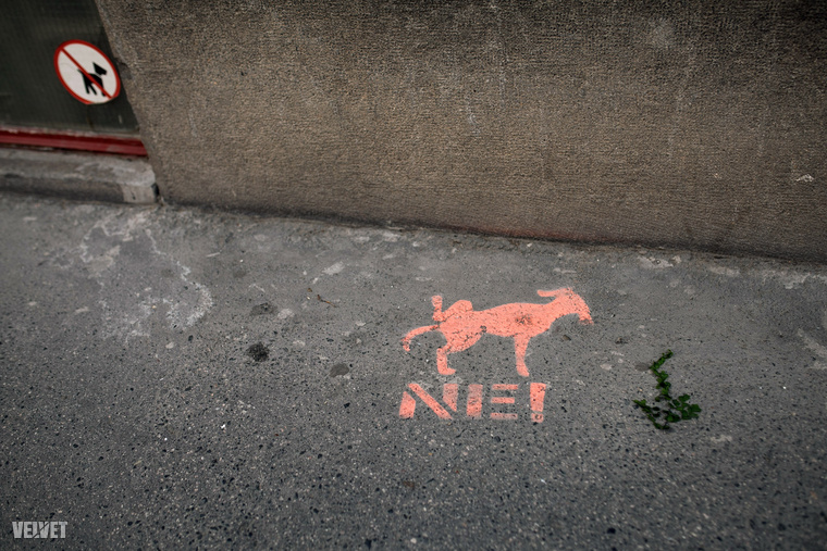 Közel a Városliget, így az Ilka utcában nem szeretik, ha a kutyák megjelölik a házak falát