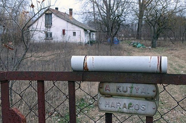 Ezen a szabadszállási tanyán élt az anya a 11 éves fiával. A kisgyerek a késelés után maga hívta a mentőket.