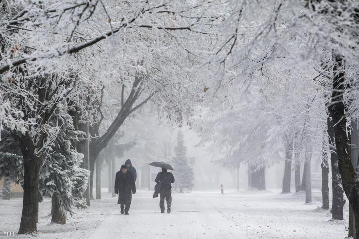 Zúzmara borítja a fákat a ködös Nagykanizsán 2016. december 6-án.