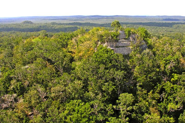 A dzsungel fölé magasodó La Danta piramis