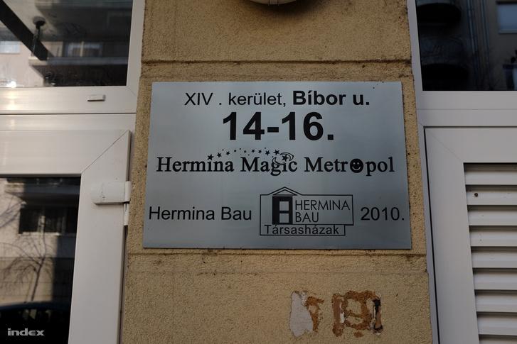 IMG 6886