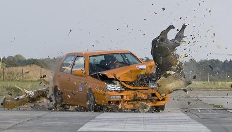 Wildsau Crash 15