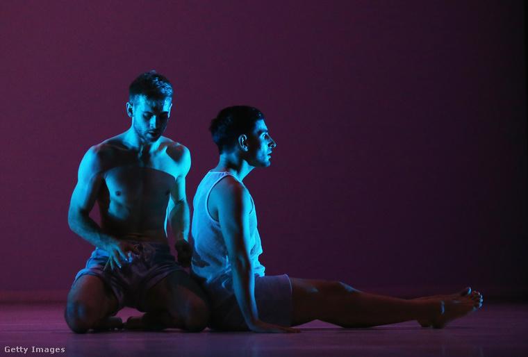 A Sydney Dance Company táncosai egy misztikus hangulatú fotón, ami az Untamed című előadás próbáján készült.