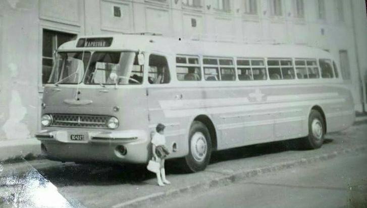 Csilla Fehér 1968