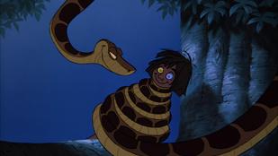 Kiment reggel pisilni, kígyó köszönt rá a vécéből
