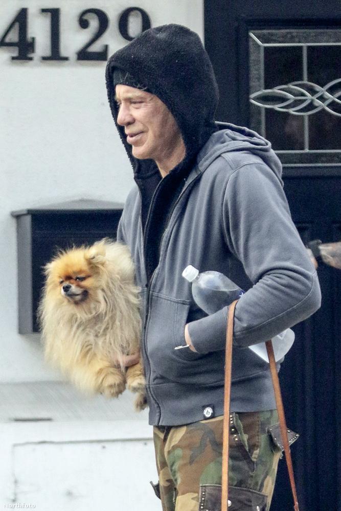 Úgy tűnik remekül passzol hozzá egy pomerániai kutya is, de csakis kézben