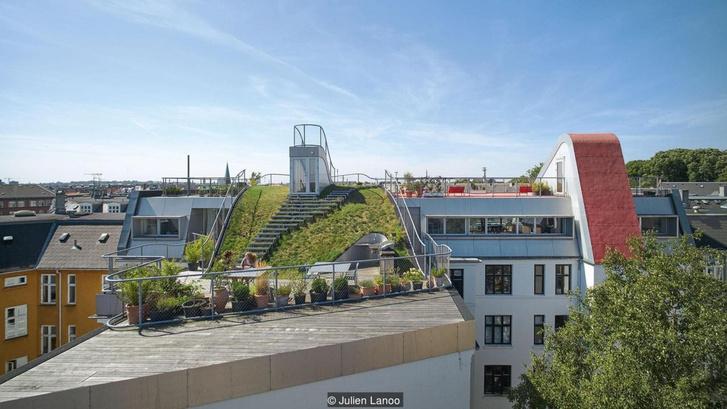 Hedonista tetőkert