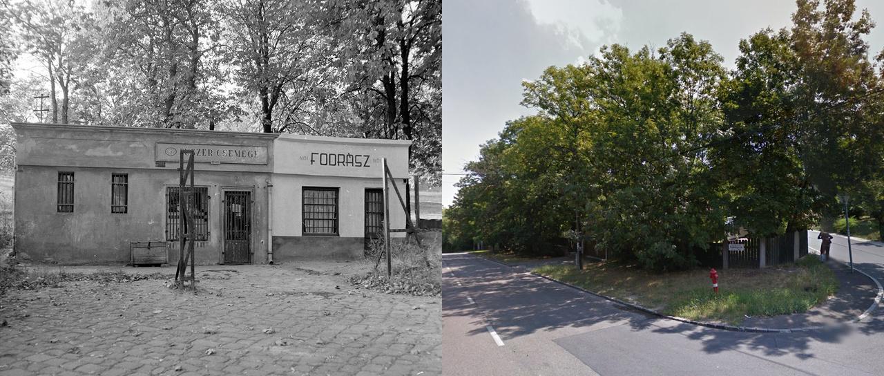 Megfejtés: Budapest XII. Kútvölgyi út 76., a Cinege utca közelében.