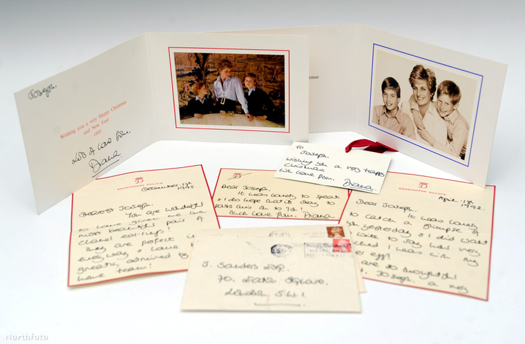 tk3s swns diana letters 170023040