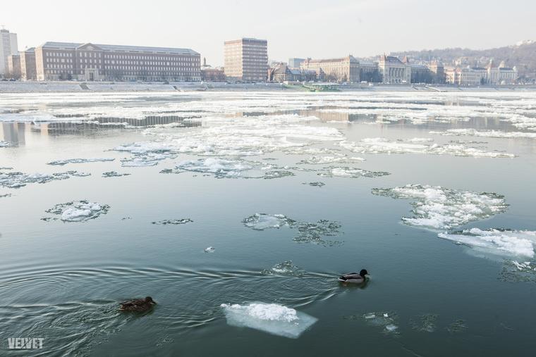 Az előrejelzést elnézve január végééig már örülhetünk annak is, ha nulla fokot mutat a hőmérő