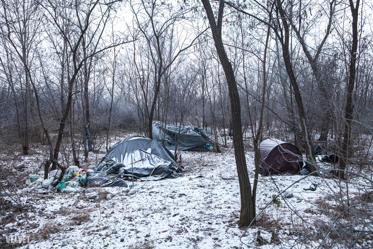 Szerencsére üresen álltak ezek a sátrak az erdőben, mert sem kirándulásra, sem kempingezésre nem alkalmas az időjárás