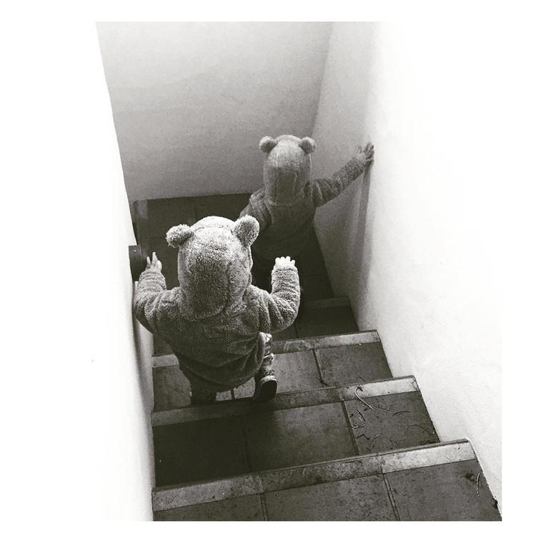 A kis medvék a folyosón igyekeznek.