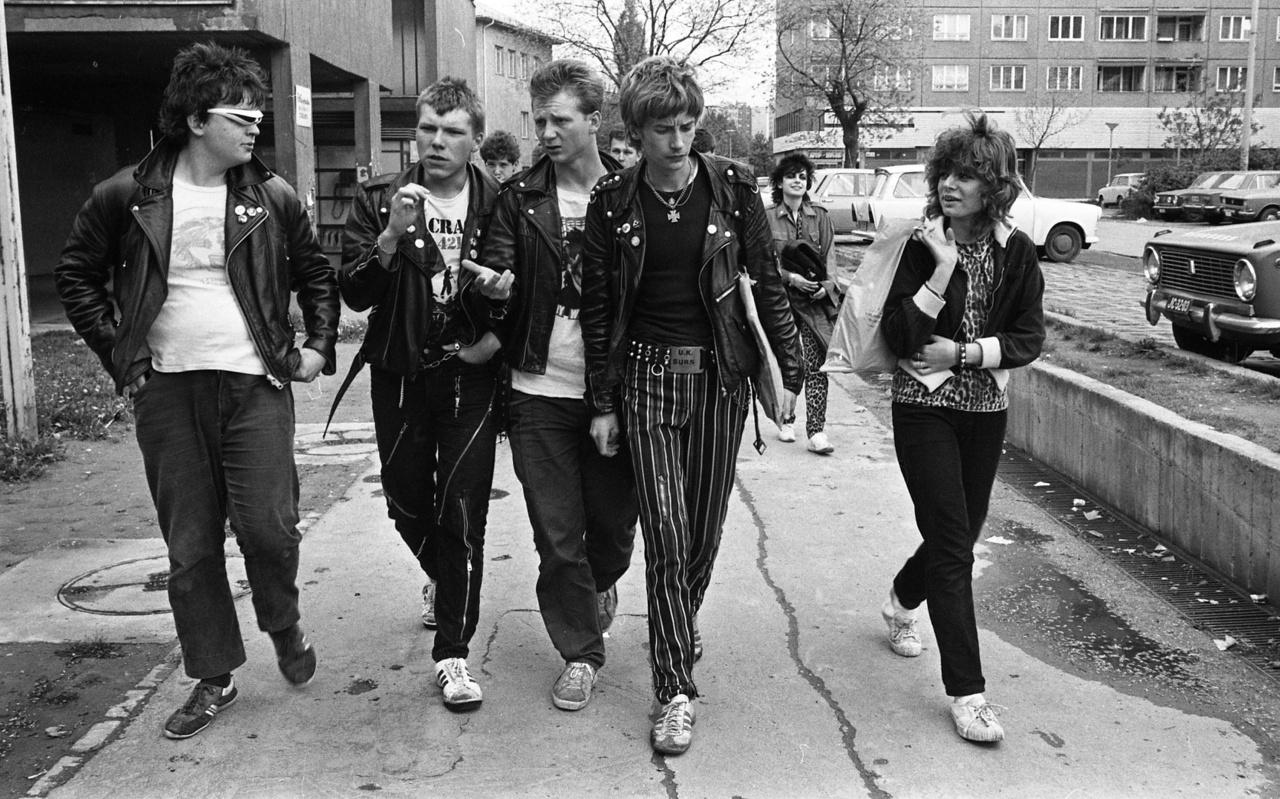 A csövesjelenség ágyazott meg a hazai punkmozgalomnak, majd akinek még a punk sem volt elég radikális, abból később rasszista szkinhed lett. Ez újabb csavart vitt a sztoriba, hiszen ők még a punkokat is utálhatták.