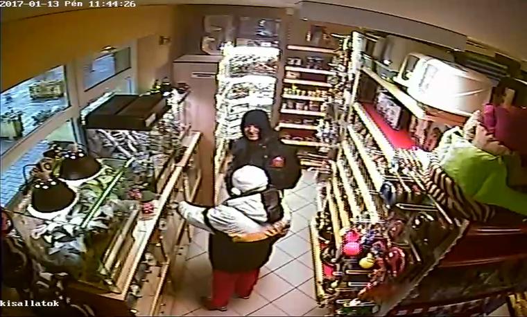A két tolvajt szerencsére a kamerafelvételek alapján felismerték, így az állat is hamar megkerült.