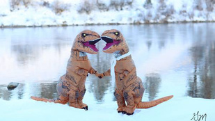 Vicces fotók készültek az igaz szerelemről