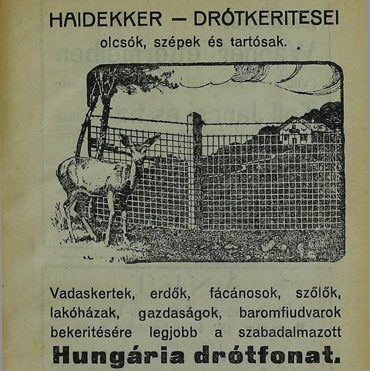 Hirdetés részlete 1922-ből (további részletek a képre kattintva)