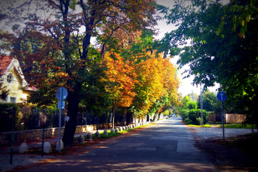 Táncsics utca