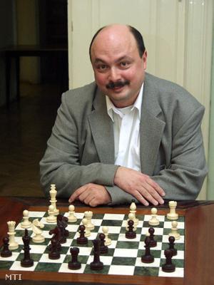 2002-es, a szlovéniai Bledben megrendezett sakkolimpián második helyezést ért el a Kállai Gábor vezette magyar férfi csapat