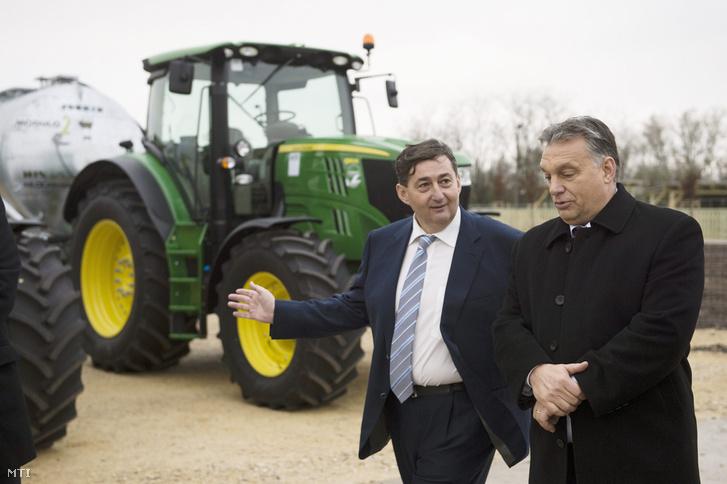 Orbán Viktor miniszterelnök és Mészáros Lőrinc felcsúti polgármester a Búzakalász 66 Felcsút Kft. bányavölgyi mangalicatelepének avatásán a Fejér megyei Alcsútdobozon 2014. november 18-án.