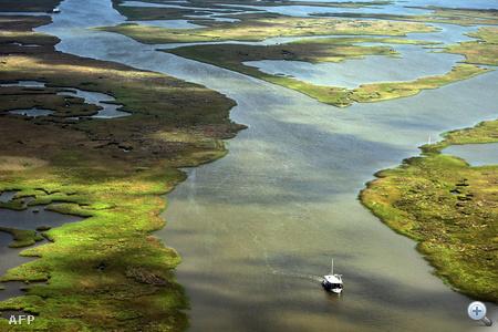 A masszív olajfolt Louisiana védett mocsarait is fenyegeti.