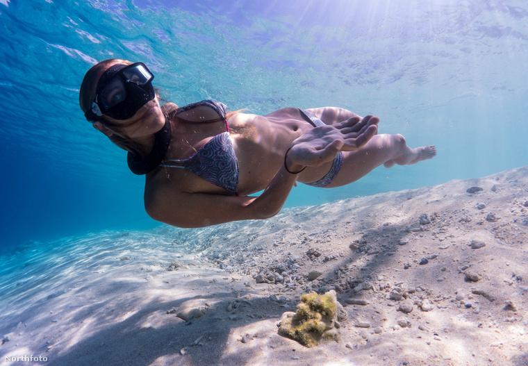 Mint egy sellő, úgy úszik az óceánban az új-zélandi szépség