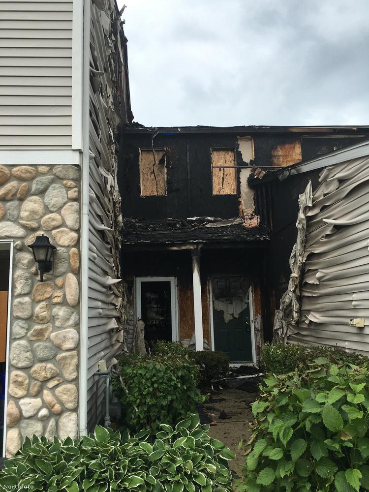 Leginkább azért, mert elődje, a nem tudni, milyen nevű páva rejtélyes módon felgyújtotta a család otthonát
