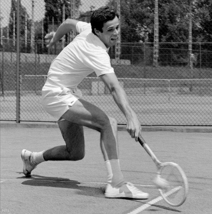 1974. július 9. Taróczy Balázs, a Vasas 20 éves teniszezője edzés közben