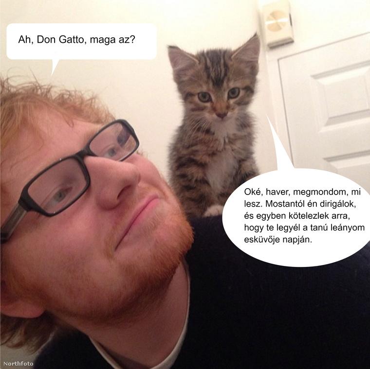 Ed Sheeran élete pokollá változott, amióta valaki átvette a családi bizniszt