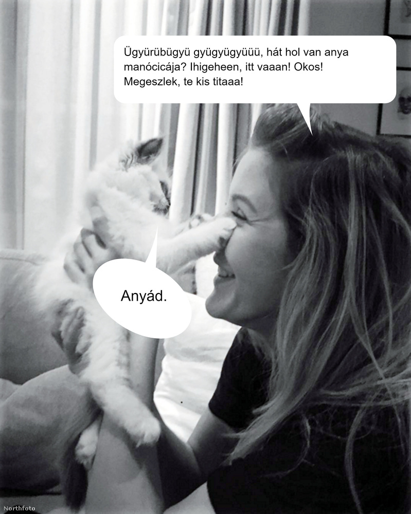 Ellie Goulding mit sem sejt, amikor a cicájával tölti a szabadidejét