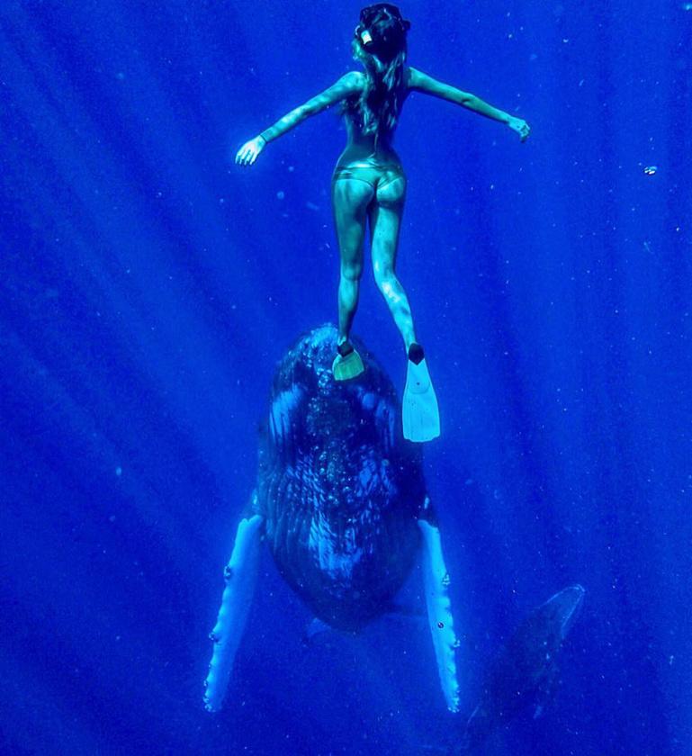 """""""Amikor a víz alatt úszom egy bálnával, olyan, mintha semmi más nem számítana - az, hogy a saját közegükben láthatom őket, és a félelem vagy kiszolgáltatottság jele nélkül léphetek velük kapcsolatba, nagyon jó érzés."""""""