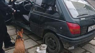 Kutyáját akarta menteni egy lány a Büdi-tónál, de beszakadt alattuk a jég