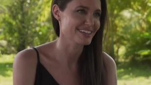 Angelina Jolie: mindig is egy család leszünk