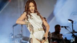 Íme a papagáj, amely tökéletesen énekli Rihanna Monster című slágerét