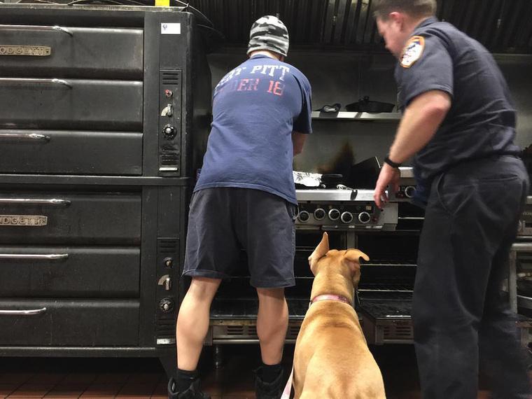 Kötelességének érzi, hogy rajta tartsa a szemét a főzési folyamatokon.