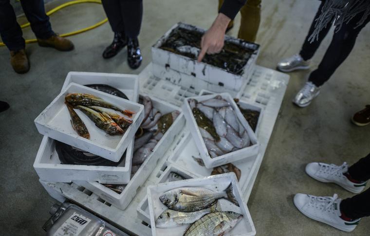 Közvetlenül a kikötő mellett halpiac is működik