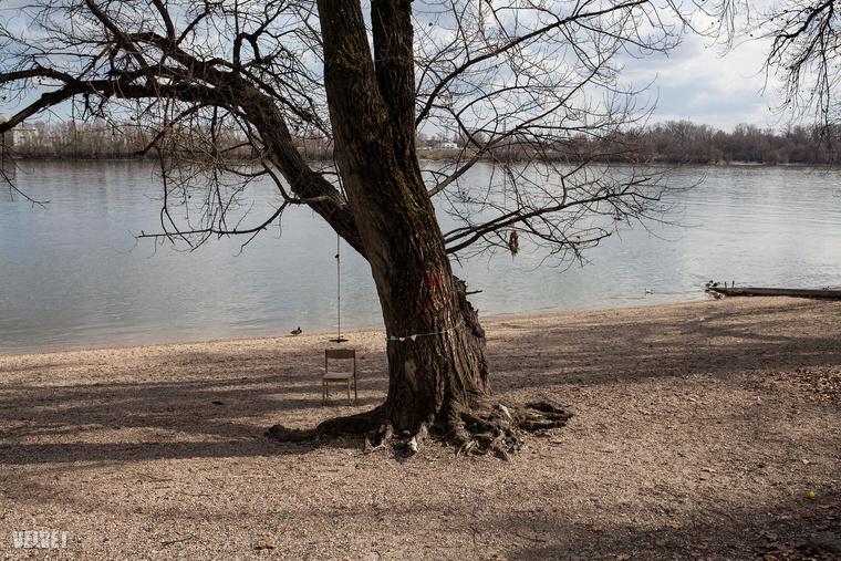Például azért, mert sejtéseik szerint majdnem 1500 fát kellene kivágni ahhoz, hogy ez elkészülhessen