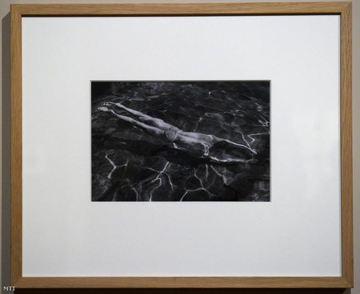 André Kertész: Víz alatt úszó