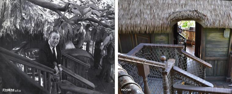 Walt Disney gyakran látogatott el a saját magáról elnevezett élmény- és kalandparkba.