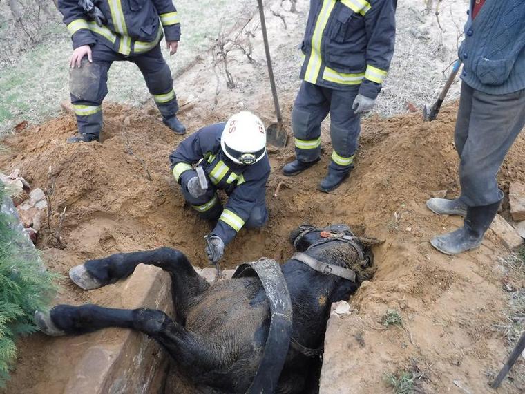 A barcsi hivatásos tűzoltók megbontották a szennyvízgödör egyik oldalát