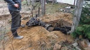 Egy szennyvízgödörbe szorult lovat mentettek meg a barcsi tűzoltók