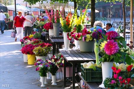 Virágpiac Győrben