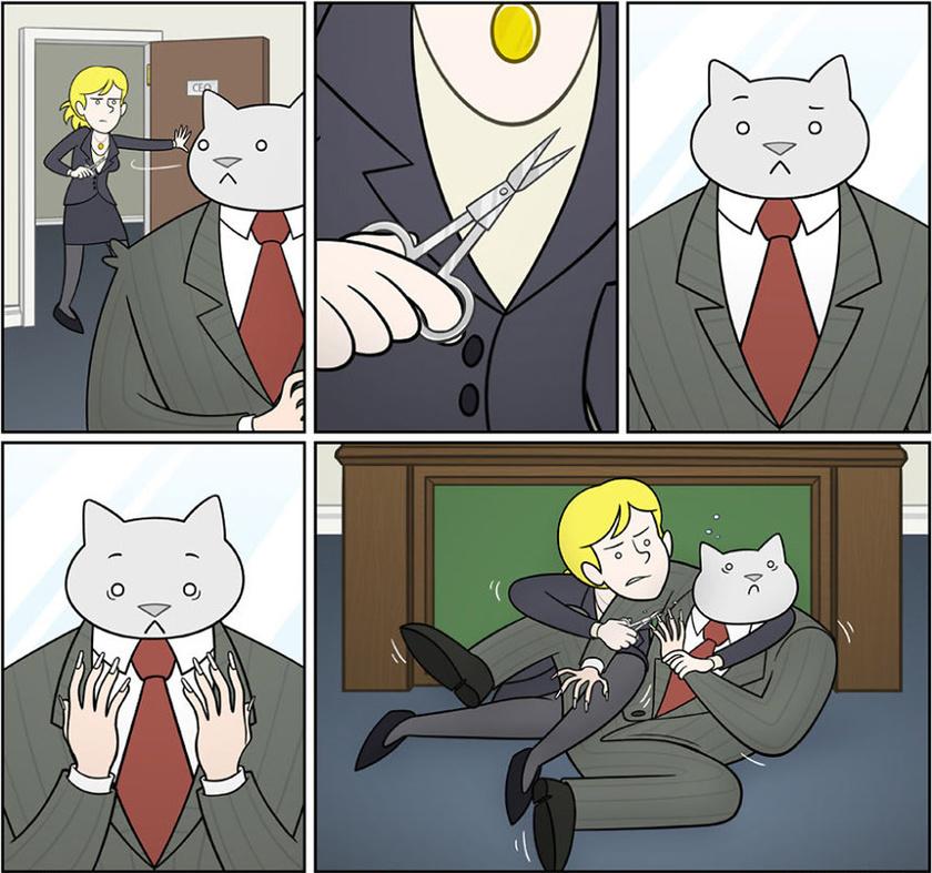 macska-korom