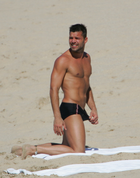 4. helyezett: Ricky Martin