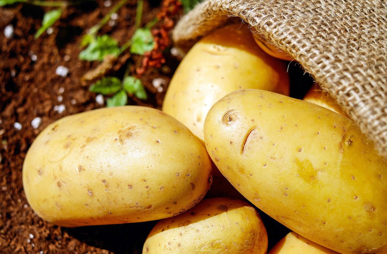 nagykep?cikkid=168587&kep=krumpli-ma-lead