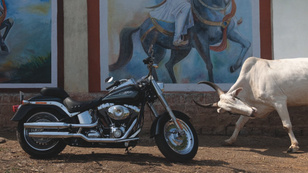 Harley: Made in India?