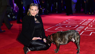 Új gazdihoz került Carrie Fisher kutyája