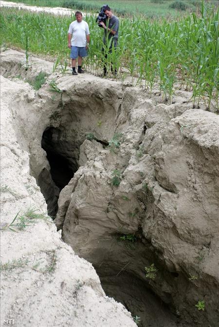 Kráter Andocs határában (Fotó:  Varga György)