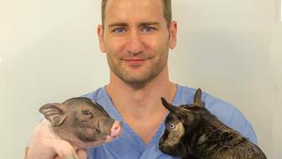 Dr. Zoltán amellett, hogy jó pasi, a világ legkülönlegesebb állatait gyógyítja