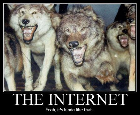 the-internet-demotivational-poster-1215383041