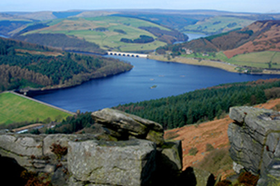 ladybower lead